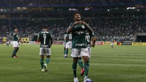 Palmeiras pede proteção à Mata Atlântica: 'Não deixar que se torne cinza'