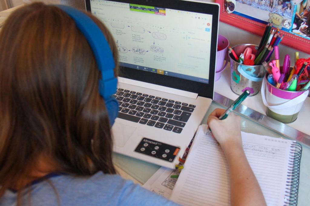 Mesmo com retorno presencial, escolas manterão conteúdo remoto para completar carga horária – Jovem Pan
