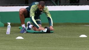 Palmeiras deve estender período de salários cortados do elenco profissional