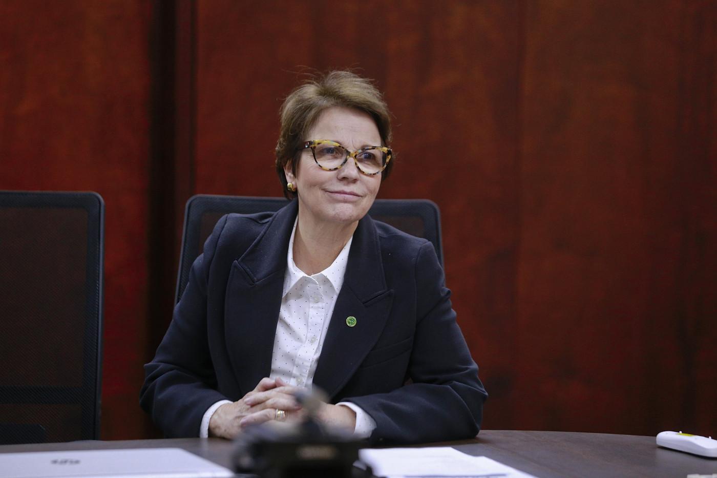 Ministra Tereza Cristina sentada em uma mesa. Ela tem cabelos curtos castanhos, usa óculos vermelhos e um terninho azul escuro com camisa branca por baixo.