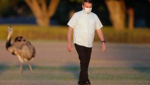 'É mentira que a Amazônia arde em fogo', diz Bolsonaro