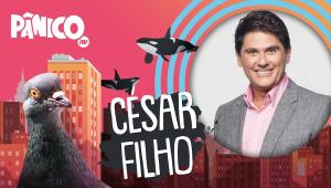 CÉSAR FILHO - PÂNICO - AO VIVO - 16/07/20