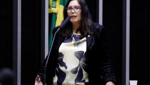 Bia Kicis: 'STF está atacando a democracia'