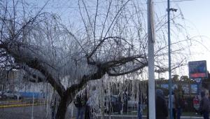Onda de frio já leva neve a cidades do Sul; confira registros