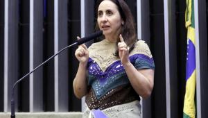 A deputada federal Adriana Ventura