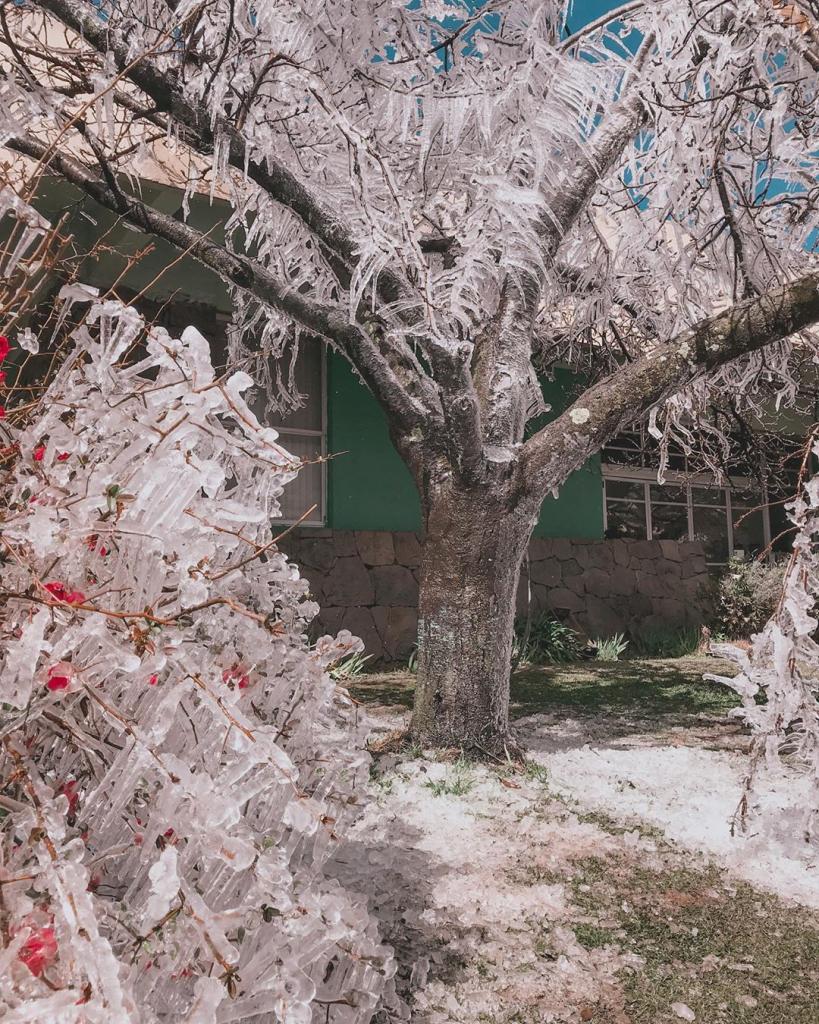 São Joaquim, em Santa Catarina, atraiu turistas com neve