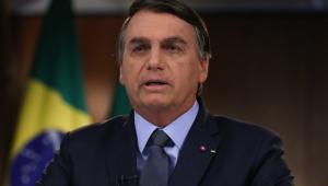 Na Cúpula da Biodiversidade, Bolsonaro diz que ONGs 'comandam os crimes ambientais no Brasil'