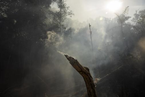 Salles diz que medidas preventivas contra fogo no Pantanal não puderam ser tomadas por 'questões ideológicas'