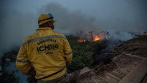 Constantino: Existe manipulação de dados sobre queimadas para atingir o Brasil