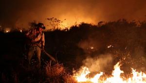 Senadores visitam neste sábado áreas devastadas no Pantanal