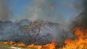 Defesa Civil diz que focos de calor no Tocantins 'seguem padrão do clima'