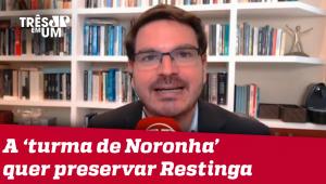 Rodrigo Constantino: Dizer que Salles é contra o meio ambiente é narrativa ideológica