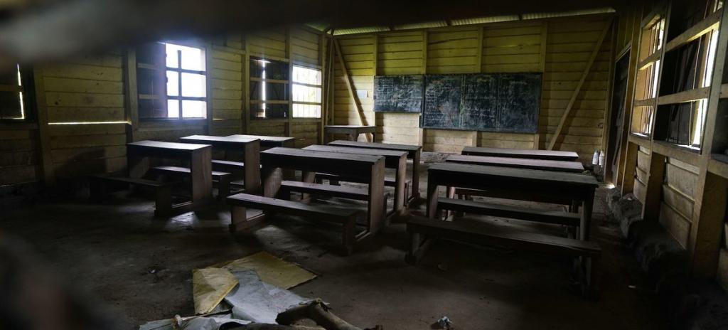 No Camarões, homens armados entram em escola e matam crianças – Jovem Pan