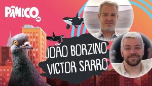 JOÃO BORZINO E VICTOR SARRO - PÂNICO - AO VIVO - 26/10/20