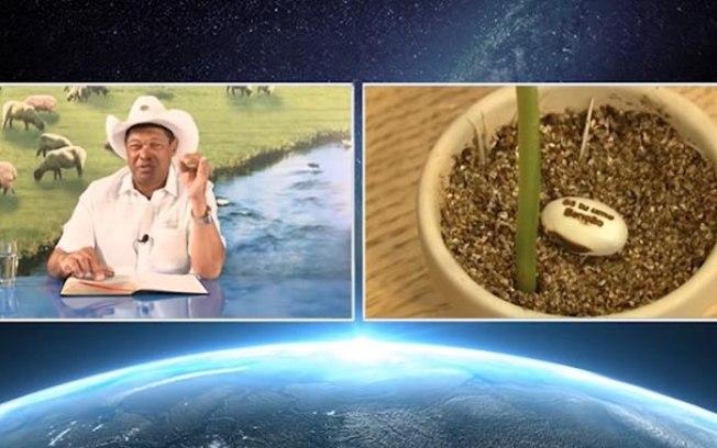 pastor-venda-sementes