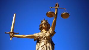 Acertos e desacertos do Tribunal de Justiça do Estado de São Paulo durante a pandemia