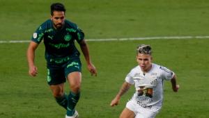 Palmeiras x Santos será a terceira final brasileira da história da Libertadores