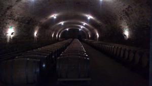 Adega armazena centenas de barris do vinho Jerez