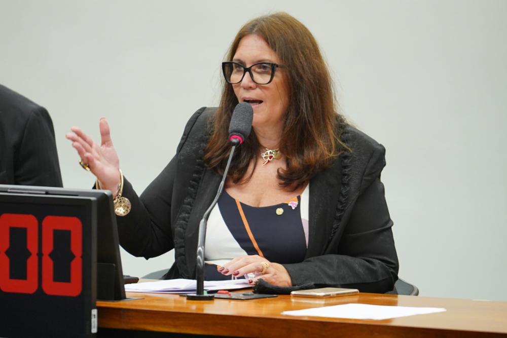 A deputada federal Bia Kicis durante pronunciamento na Câmara