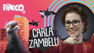 CARLA ZAMBELLI - PÂNICO - 04/03/21