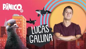 LUCAS GALLINA - PÂNICO - 02/03/21