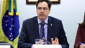 deputado luiz phelippe de orleans e bragança em audiência pública