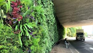 Parede verde projetada debaixo de viaduto na cidade de São Paulo
