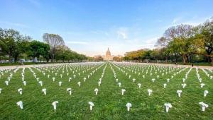 National Mall em Washington D.C. é coberto de rosas brancas em homenagem às vítimas da violência armada