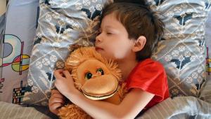 Garoto dorme abraçado a um animal de pelúcia