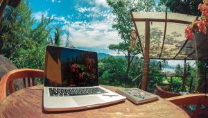 Notbook apoiado na mesa com árvore ao fundo