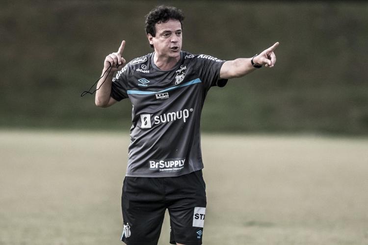 Com uma camisa cinza e um shorts preto do Santos, Fernando Diniz gesticula em um dos campos do CT Rei Pelé