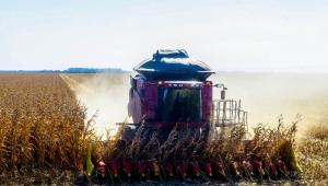 Máquina colhe milho em plantação no município de Sorriso