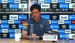 Fernando Diniz durante apresentação no Santos