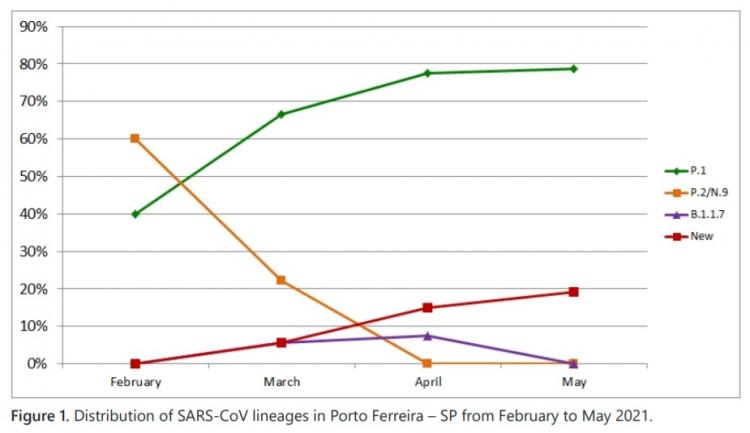 Gráfico mostrando curva crescente da nova variante no Brasil