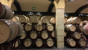 Adega com vários barris de vinhos. Eles são marrom claro e estão colocados deitados, um em cima dos outros.