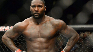 Anthony Johnson, lutador norte-americano