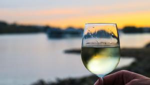 Uma taça de vinho branco servida até a metade e segurada por uma mão. Atrás, um cenário desfocado de um lago e algumas montanhas