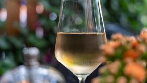 Vinho branco servido até a metade em uma taça. Cenário em volta está desfocado