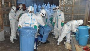 Pessoas fardadas para se proteger da gripe aviária