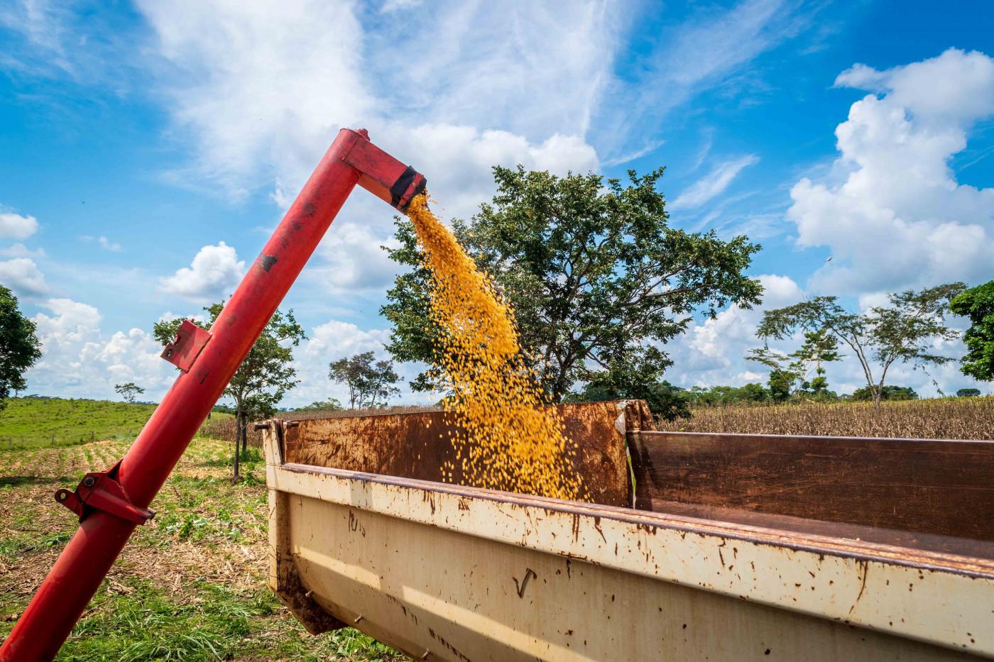 Máquina vermelha jogando milho em um suporte