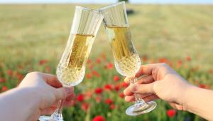 Duas mãos, aparentemente a de um homem e a de uma mulher, brindam com taça de espumante em um gramado aberto