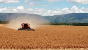 Caminhão vermelho em lavoura de soja
