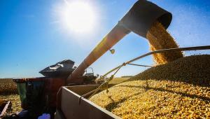 Colheitadeira colhe o milho em uma plantação no município de Sorriso, no norte do estado do Mato Grosso.