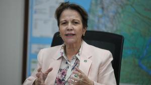 Sentada em seu gabinete, a ministra Tereza Cristina, vestida com camisa florida e terno creme, de gesticula enquanto fala