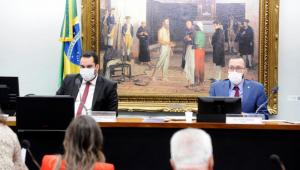 Deputados na comissão da PEC do voto impresso
