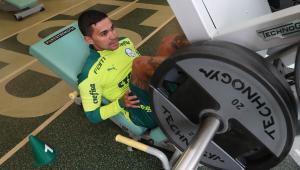 Dudu está liberado para voltar a jogar pelo Palmeiras