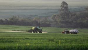 Em um vasto de terreno de plantação de trigo, dois tratores circulam aplicando herbicida