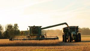 Colheita em plantação de soja