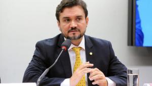 Deputado Celso Sabino fala em audiência na Câmara