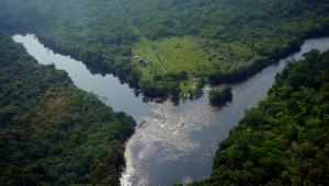 Foto tirada de cima de duas nascentes de um rio que se encontram no meio, onde ele fica mais cheio. Em volta, uma floresta com bastante vegetação